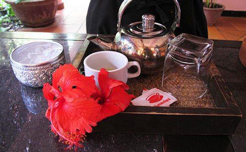Пышный гибискус на чайном столике