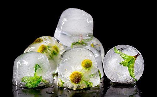 Ромашковый лед